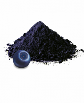 Сублимированная черника (порошок), 50 гр