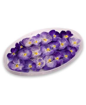 Съедобная обезвоженная Виола Райский цветок, 5ш