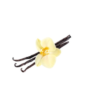 Пищевой ароматизатор TРА Французская ваниль (French Vanilla), 10мл